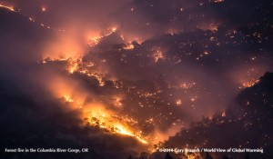 2014 Columbia River Gorge Forest Fire