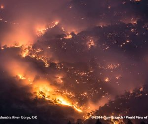 Columbia River Gorge Forest Fire